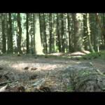 Meta Slider - YouTube - RUH8jta8ec0