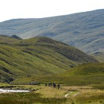 detail_scotland_sect02-wh0