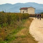 detail_slovenia-croatia_sect_03_4
